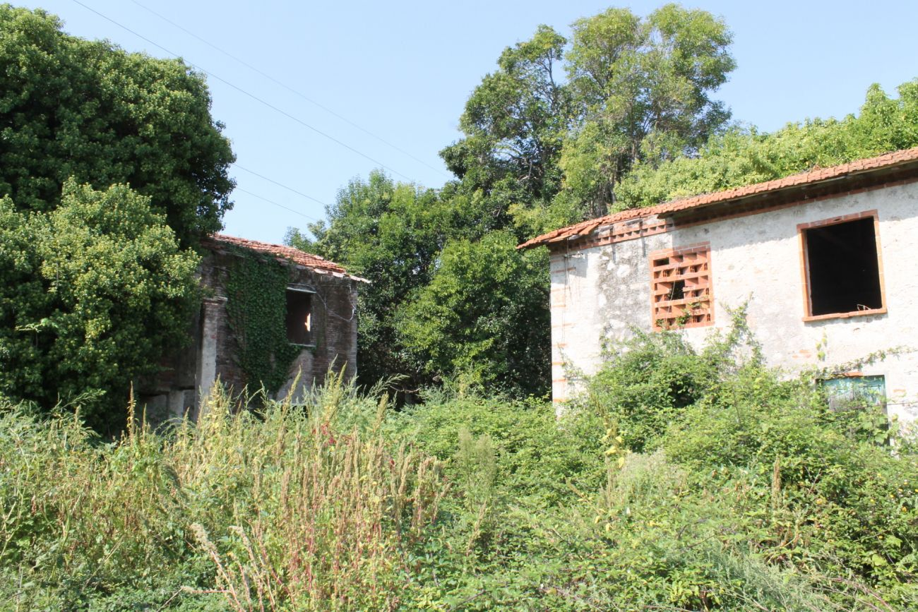VITTORIA APUANA – RUSTICI TO REACT WITH LARGE LAND
